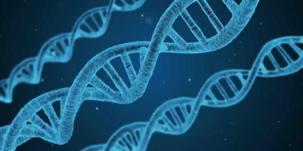 phobie sociale génétique