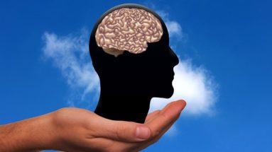 cerveau d'un phobique social