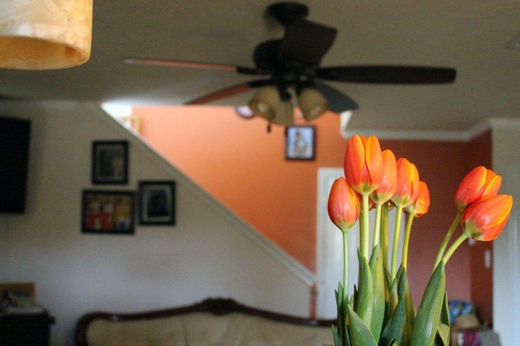 Améliorer votre humeur avec le orange